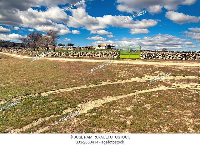 Farm lan in San Pablo de los Montes. Toledo. Castilla la Mancha. Spain. Europe