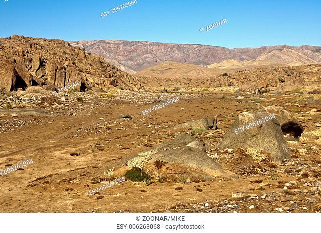 desert-like landscape in the Richtersveld