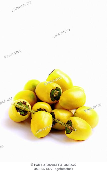 Pupunha fruits Bactris gasipaes, Arecaceae, 2009