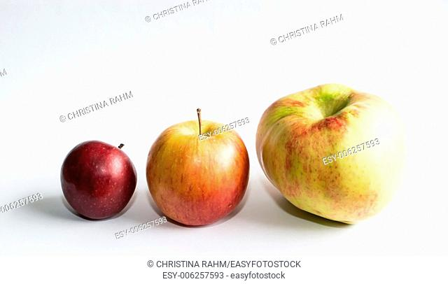 Three apples on white. Three apples in different sizes on white background