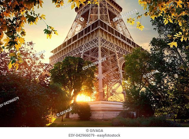 Eiffel Tower in the autumn under gray sky, Paris