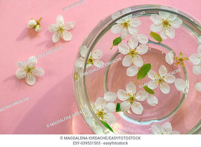 Spring flowers in bowl of water