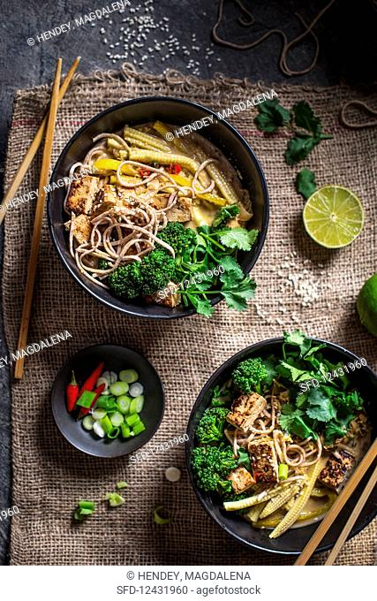 Hot and sour coconut broth with noodles, vegetables and tofu pieces