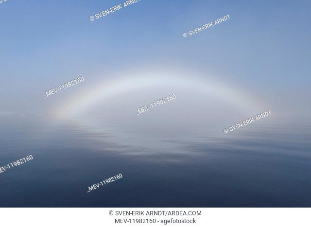 Fogbow in the arctic - Svalbard - Norway