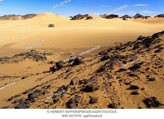 Akakus Area; Dunes; Scenery; Libyan Desert; Libyan Arab Jamahiriya