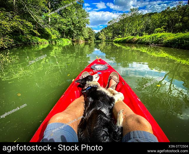 Dog in Kayak on Deer Creek, Harford County