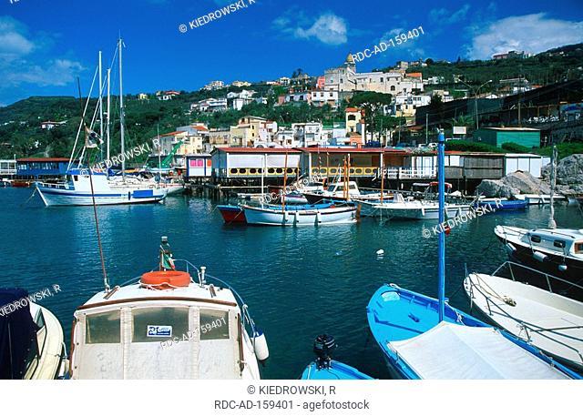 Fishing harbour Massa Lubrense Bay of Naples Campania Italy