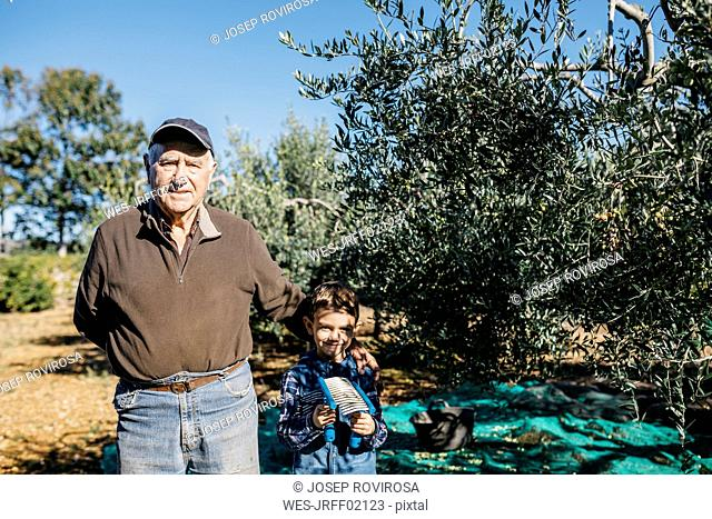 Portrait of senior man with his grandson in olive orchard