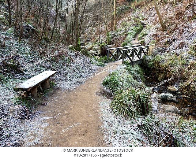 Footbridge over Maspie Burn in Maspie Den on a Frosty Winbter Day Falkland Estate Falkland Fife Scotland