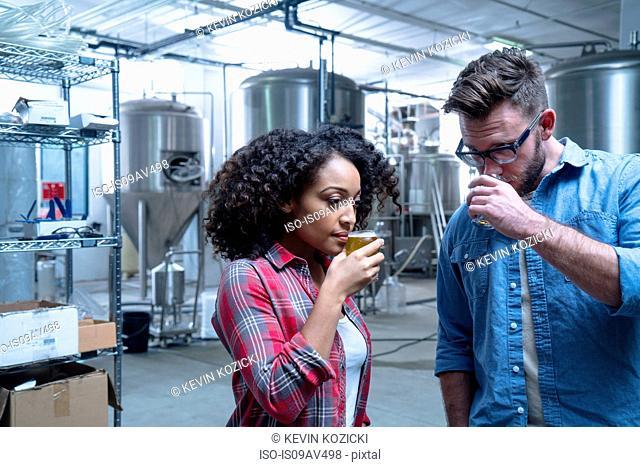Colleagues in brewery sampling beer