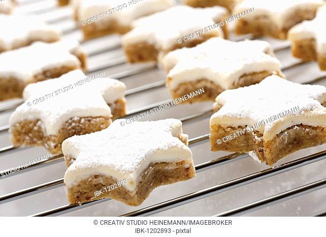 Cinnamon cookies on oven grid