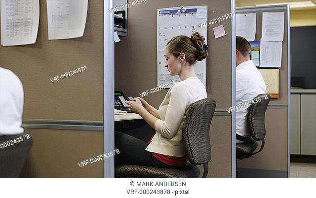 MS ZI Woman texting at desk in office / Orem, Utah, USA