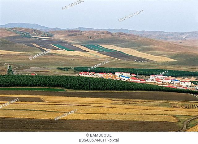 Saihanba, Fengning County, Hebei Province of People's Republic of China