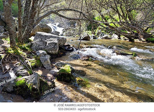 Aguilon stream in the Sierra de la Morcuera. Rascafria. Madrid. Spain. Europe