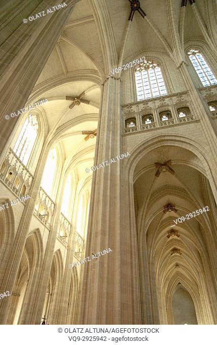 Brick arches, Saint Pierre and Saint Paul Cathedral, interior view, Nantes, Pays de la Loire, France