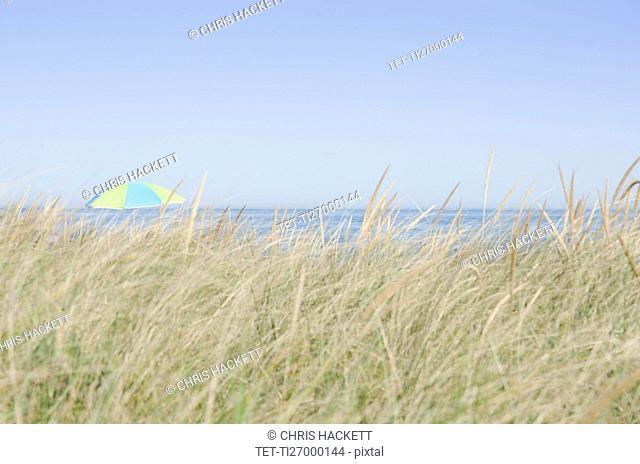 View of beach umbrella by sea