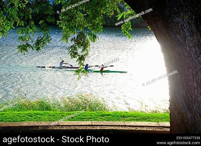 Seville, Spain - November 5, 2019: Canoeist crossing the Alfonso XIII Canal in Seville