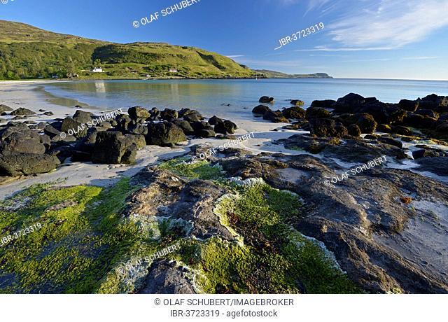 Beach of Calgary Bay, Isle of Mull, Inner Hebrides, Argyll and Bute, Scotland, United Kingdom