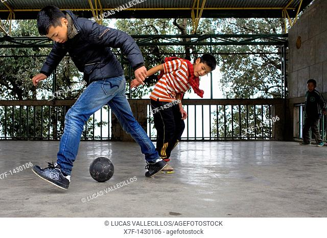 Children playing, in Tibetan Children's Village  Dharamsala, Himachal Pradesh state, India, Asia