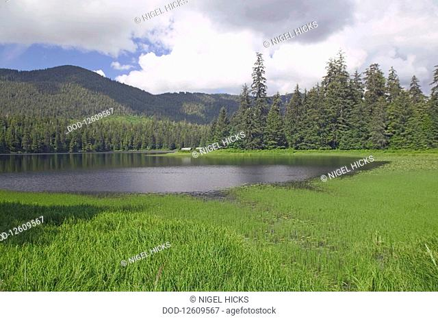 USA, Alaska, Southeast Alaska, Ketchikan, temperate rainforest bordering Ward Lake