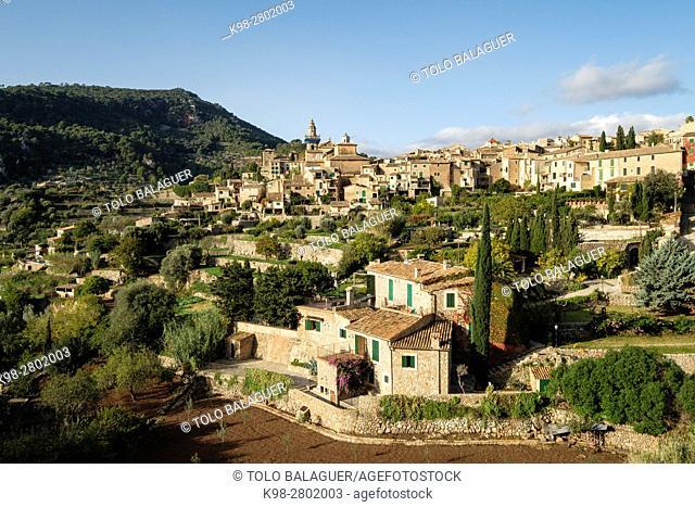 Cartuja , Valldemossa, Sierra de Tramuntana, Mallorca, Balearic Islands, spain, europe