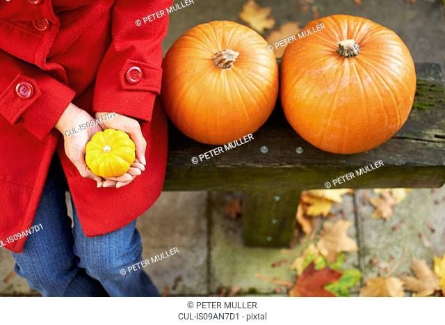 High angle view of mature woman with pumpkins on garden bench