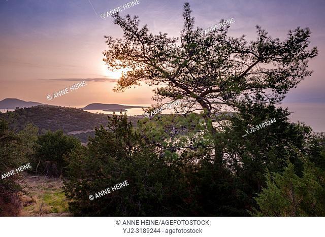 Sunrise over Turkish Riviera with pine tree, islands and peninsula. 20km south of Bodrum, Turkey