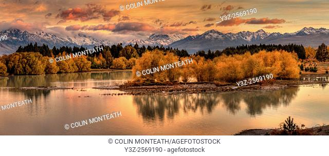 Dawn panorama, willow trees in autumn colours, Lake Pukaki, Aoraki / Mt Cook wreathed in cloud, Mackenzie country, Canterbury