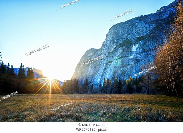 Yosemite National Park, the dramatic scenery and valleys in the park, with steep cliffs and pine forest