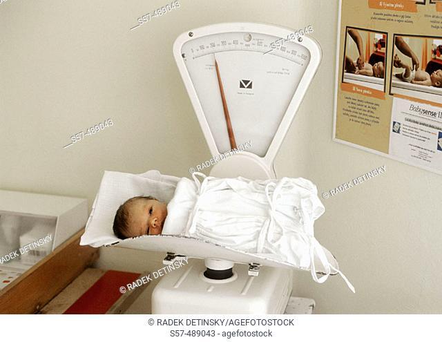 New born baby in maternity hospital