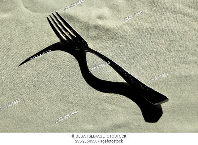 A fork and its shadow