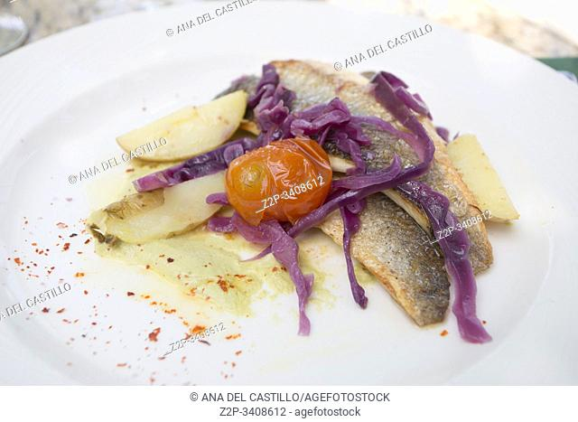 Fillet of fish with tomato cherry potato and cabbage for starter