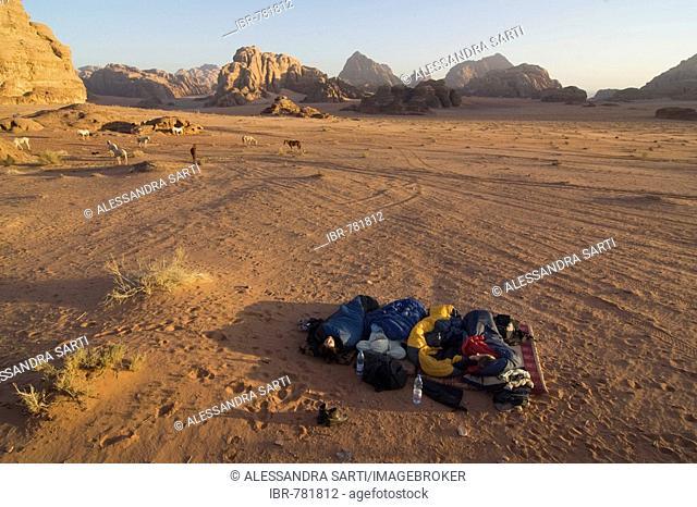 Tourists sleeping in a sleeping bag under an open sky in the desert, Wadi Rum, Jordan, Middle East