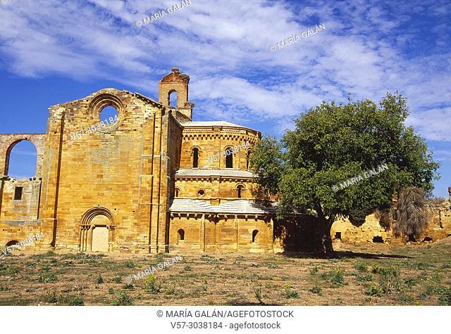 Ruins of the monastery. Granja de Moreruela, Zamora province, Castilla Leon, Spain
