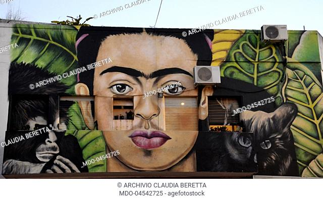 A Murales depiction the mexican paintress Frida Kahlo on Palermo district wall..Buenos Aires, december 7th 2017