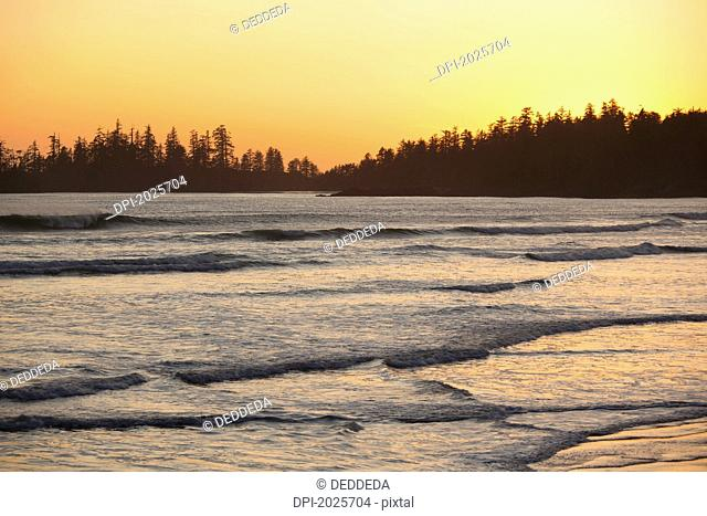 waves at long beach a surfer's paradise at sunset in pacific rim national park near tofino, british columbia canada