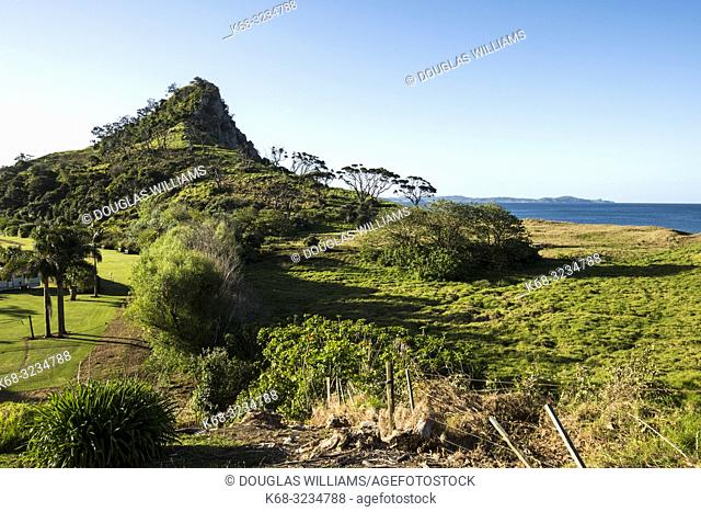 Treasure Island, Pataua, North Island, New Zealand