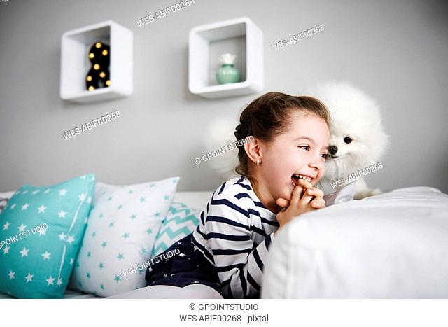 Laughing little girl playing with dog on the couch in the living room