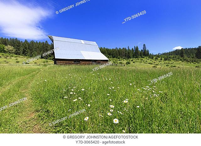 A grassy field leading up to a barn on a sunny day near Harrison, Idaho