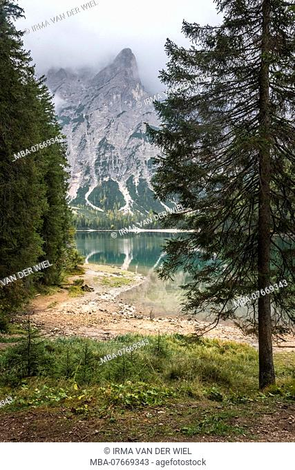 Autumn hike around the Pragser Wildsee in the Dolomites, Italy, view over the lake towards Seekofel, conifers in the foreground