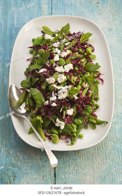 Green vegan raddiccio salad