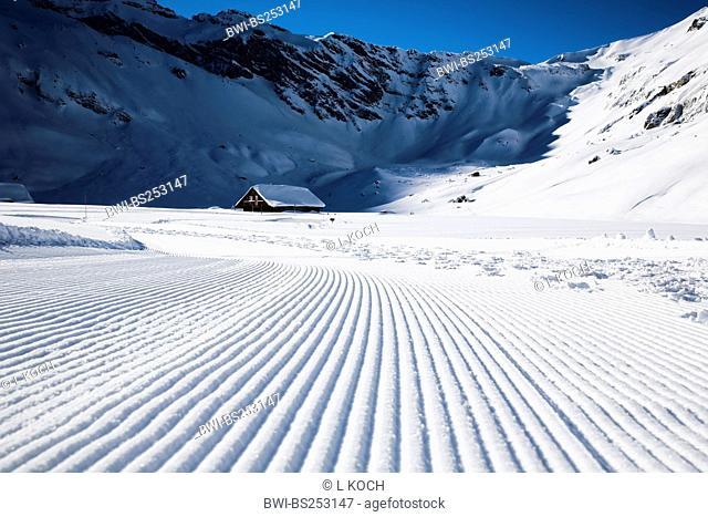 Engstligenalp, Switzerland, Bernese Oberland, Adelboden