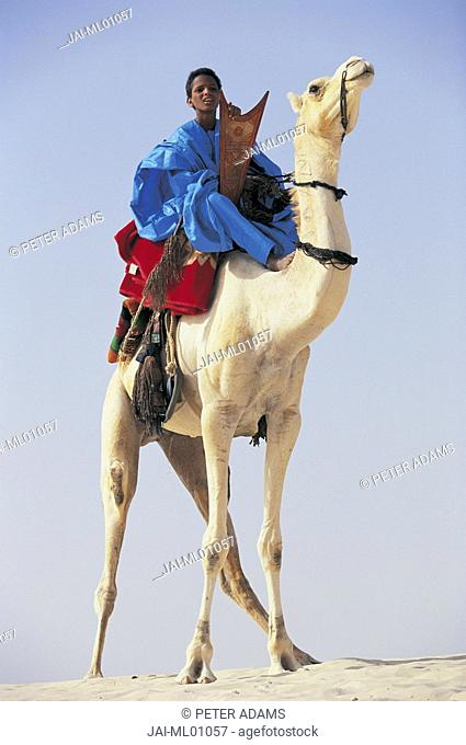 Touareg tribesman on camel, Mali