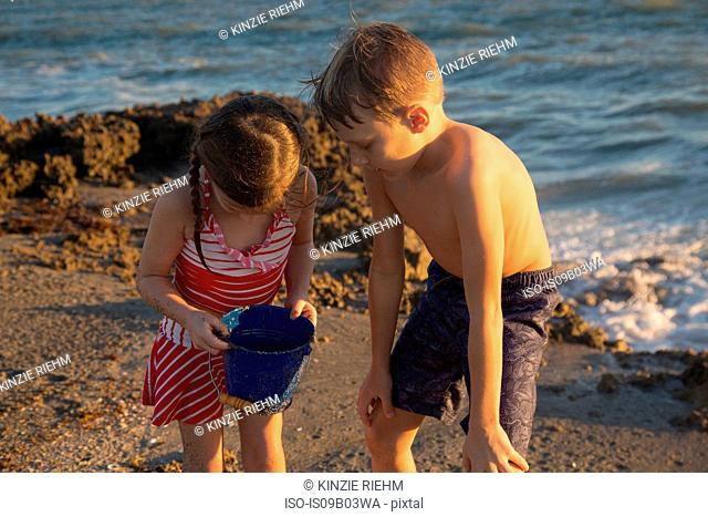 Girl and brother peering into toy bucket on beach, Blowing Rocks Preserve, Jupiter Island, Florida, USA