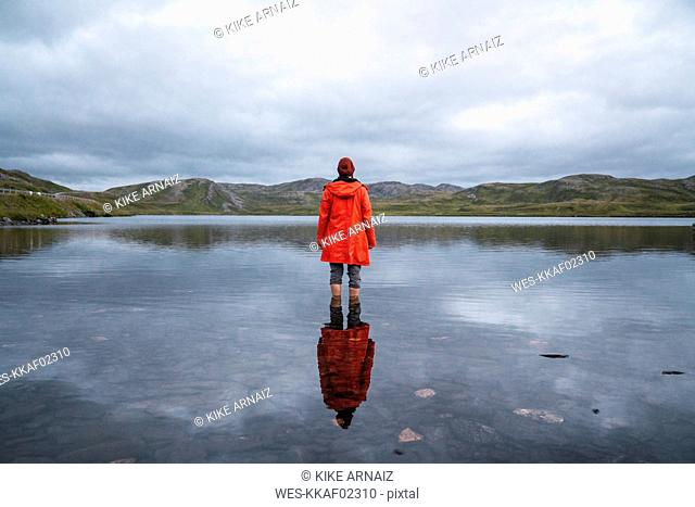 Young man standing ankle deep in water, looking at distance, rear view