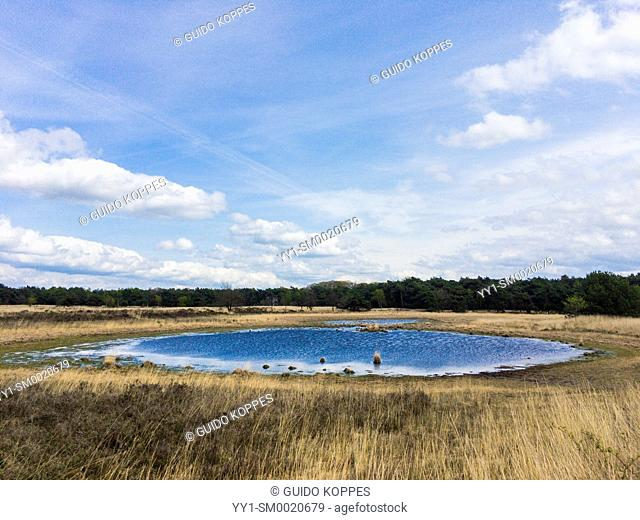 Riel, Netherlands. Pond inside Regte Heide moorland under a blue, spring sky