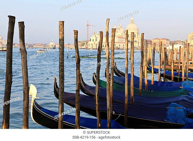 Gondolas moored in a canal with a Basilica in the background, Santa Maria Della Salute, Dorsoduro, Grand Canal, Venice, Veneto, Italy