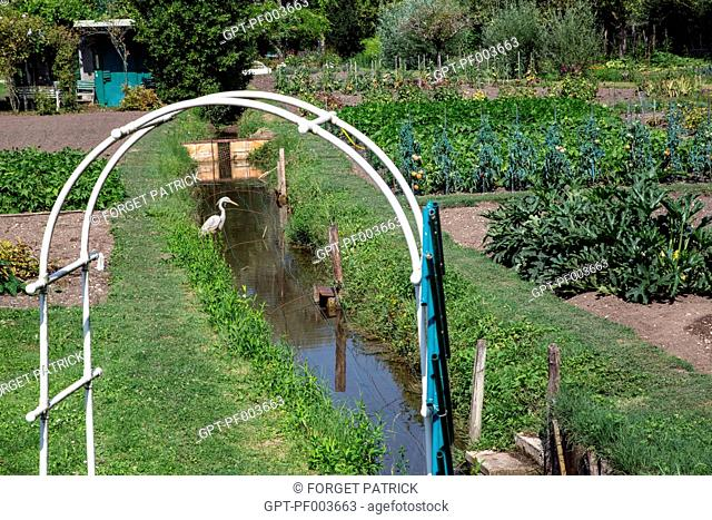 GARDEN ALLOTMENT IN THE LOW MARSHES, CITY OF BOURGES, (18) CHER, CENTRE, FRANCE