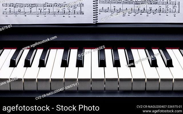 Black and white keys on a electronic piano