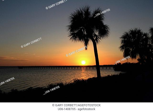 A sunset with two palm trees and the water at Port Charlotte and Charlotte Harbor in Florida, USA